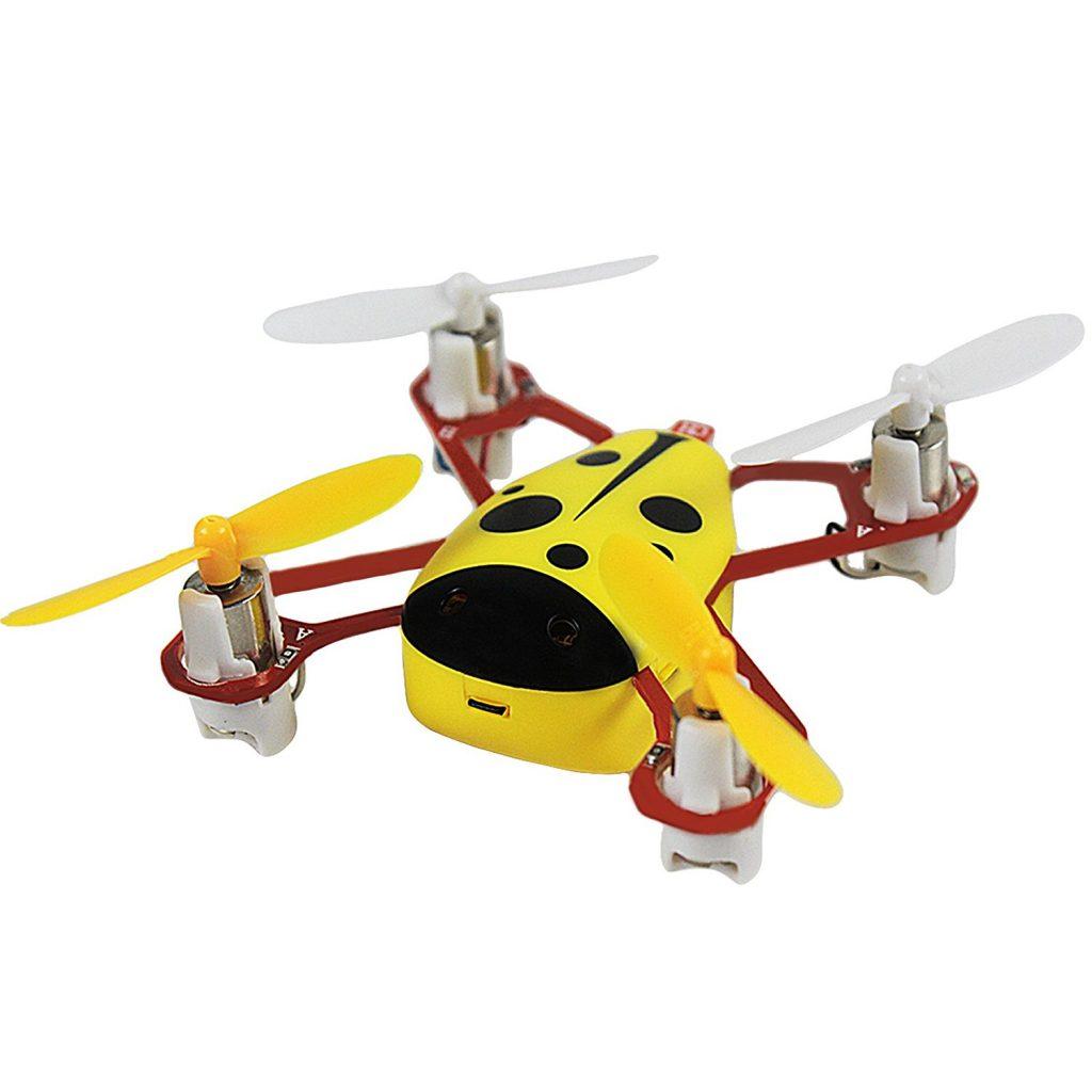 Nano RC Drone